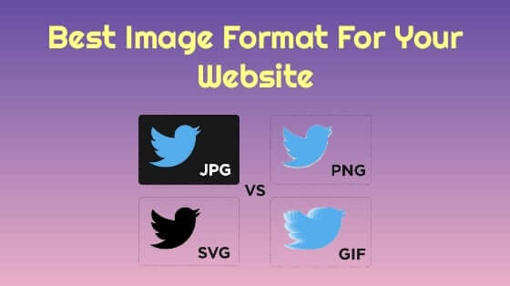 Best Image Format for Your Website. JPEG vs PNG vs GIF vs SVG